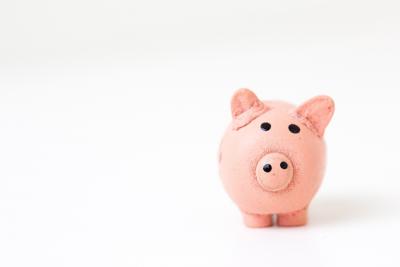 A piggy-bank on a plain white background.